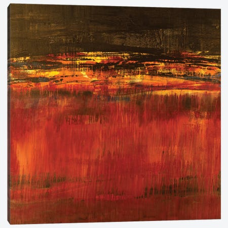 Molten Lava Canvas Print #JAR86} by Liz Jardine Canvas Wall Art