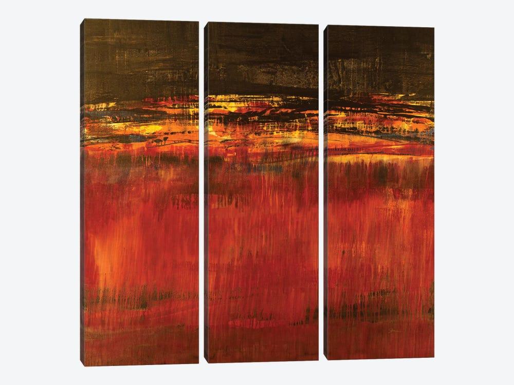 Molten Lava by Liz Jardine 3-piece Canvas Print