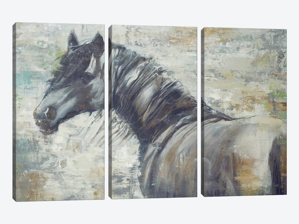 On The Wind by Liz Jardine 3-piece Canvas Wall Art
