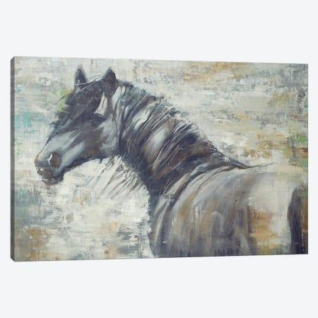 On The Wind Canvas Print #JAR89} by Liz Jardine Canvas Print