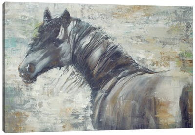 On The Wind Canvas Art Print