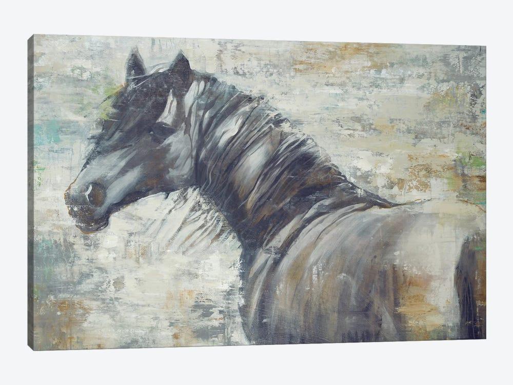 On The Wind by Liz Jardine 1-piece Canvas Art