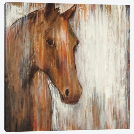 Painted Pony Canvas Print #JAR92} by Liz Jardine Canvas Art