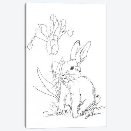 Bunny Sketch Iris Canvas Print #JAU23} by Jodi Augustine Canvas Artwork