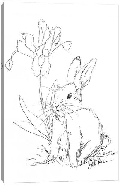 Bunny Sketch Iris Canvas Art Print