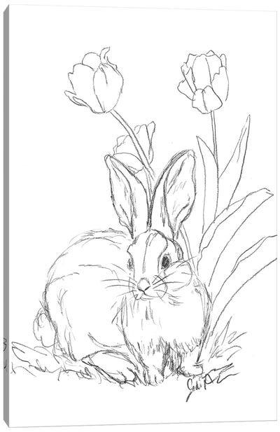 Bunny Sketch Tulip Canvas Art Print