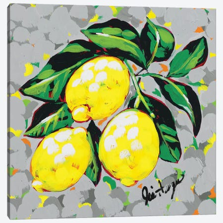 Fruit Sketch Lemons Canvas Print #JAU5} by Jodi Augustine Canvas Art Print
