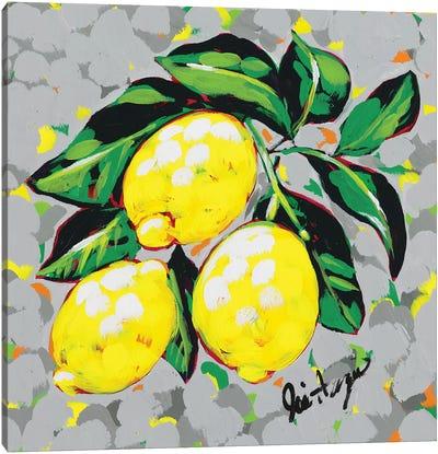 Fruit Sketch Lemons Canvas Art Print