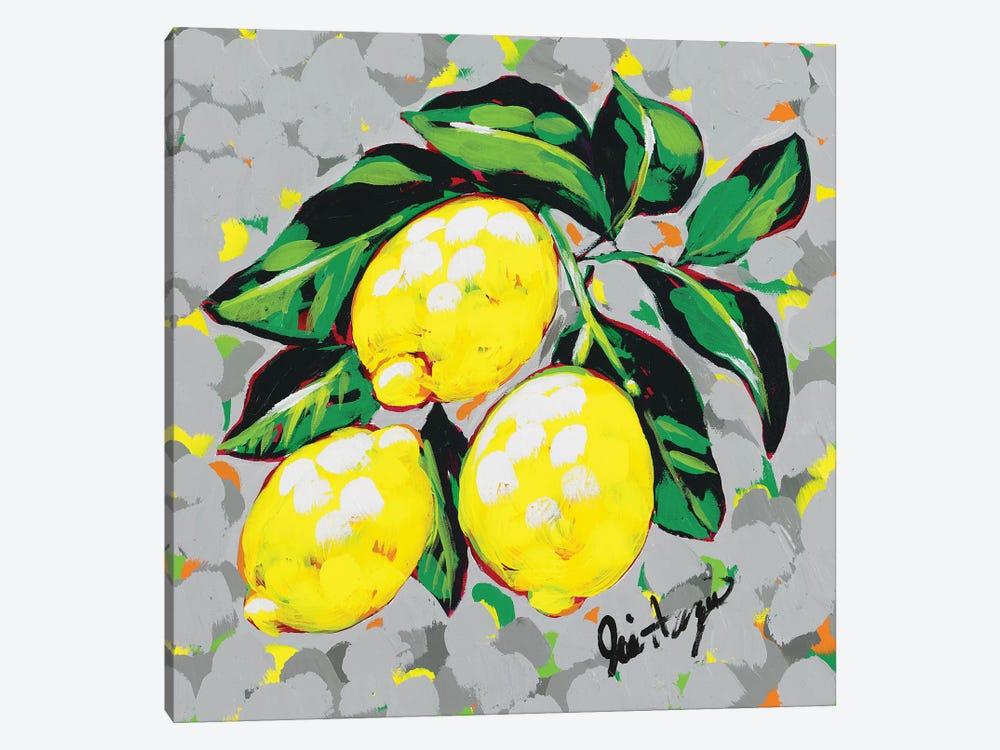 Fruit Sketch Lemons by Jodi Augustine 1-piece Canvas Art Print