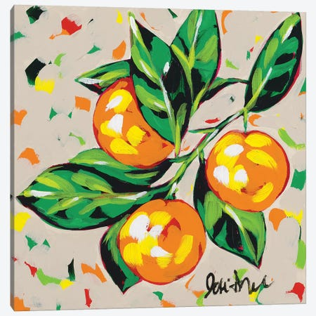 Fruit Sketch Oranges Canvas Print #JAU6} by Jodi Augustine Art Print