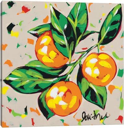 Fruit Sketch Oranges Canvas Art Print
