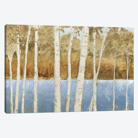 Lakeside Birches Canvas Print #JAW119} by James Wiens Canvas Print