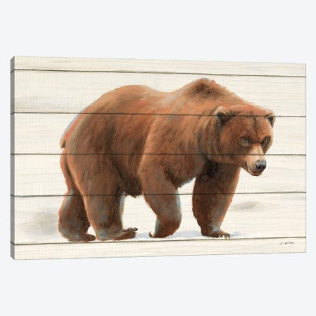 Northern Wild I on Wood Canvas Print #JAW135} by James Wiens Canvas Art