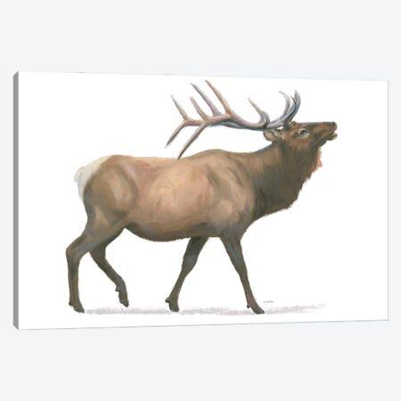 Northern Wild III Canvas Print #JAW138} by James Wiens Art Print