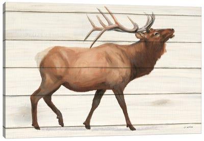 Northern Wild III on Wood Canvas Art Print