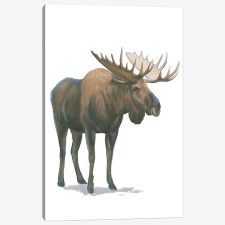 Northern Wild VI Canvas Print #JAW142} by James Wiens Canvas Artwork