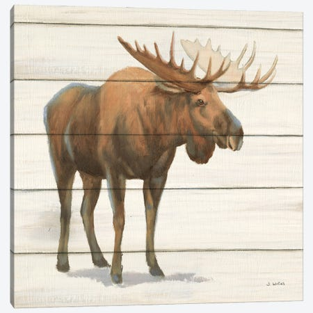 Northern Wild VI on Wood Canvas Print #JAW143} by James Wiens Canvas Wall Art