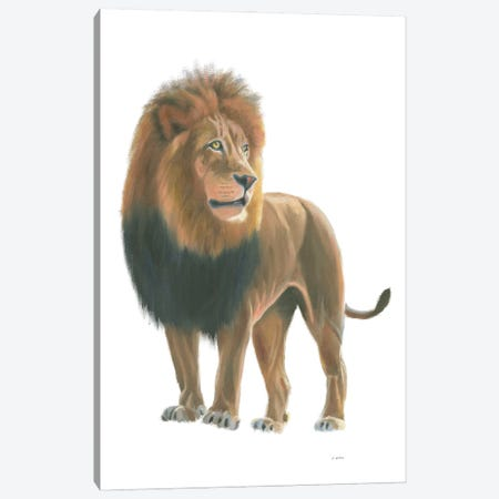 Wild and Free I Canvas Print #JAW144} by James Wiens Canvas Art Print