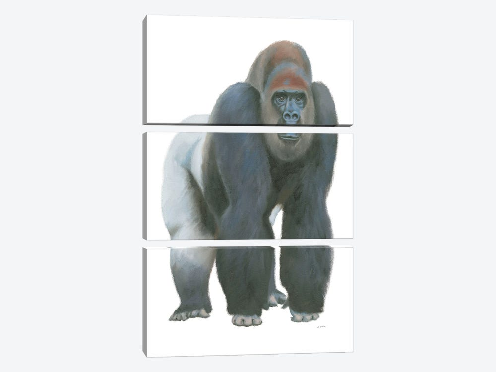 Wild and Free II by James Wiens 3-piece Canvas Art
