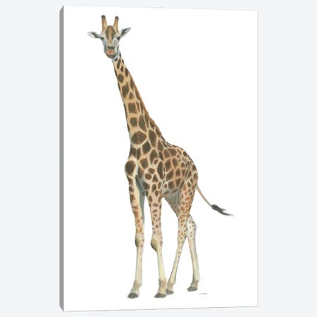 Wild and Free V Canvas Print #JAW148} by James Wiens Canvas Wall Art