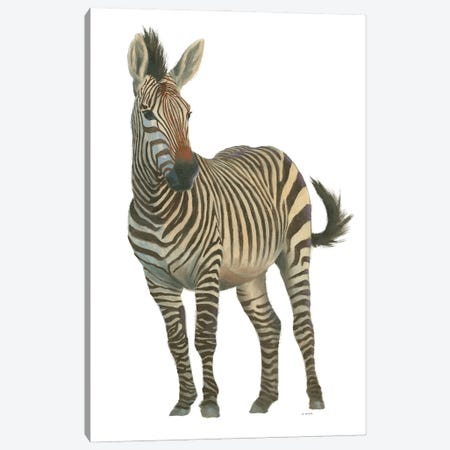 Wild and Free VI Canvas Print #JAW149} by James Wiens Canvas Artwork