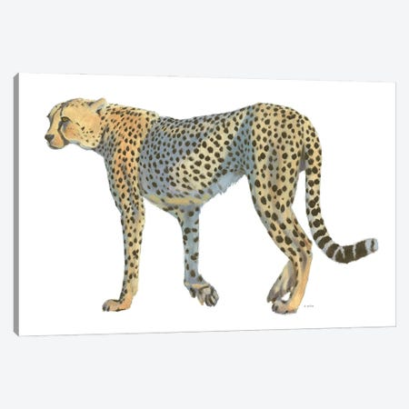 Wild and Free VII Canvas Print #JAW150} by James Wiens Canvas Art Print