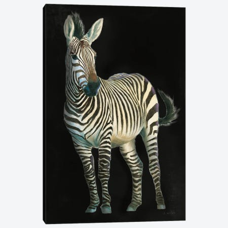 Wild and Free VI Black Canvas Print #JAW161} by James Wiens Canvas Wall Art