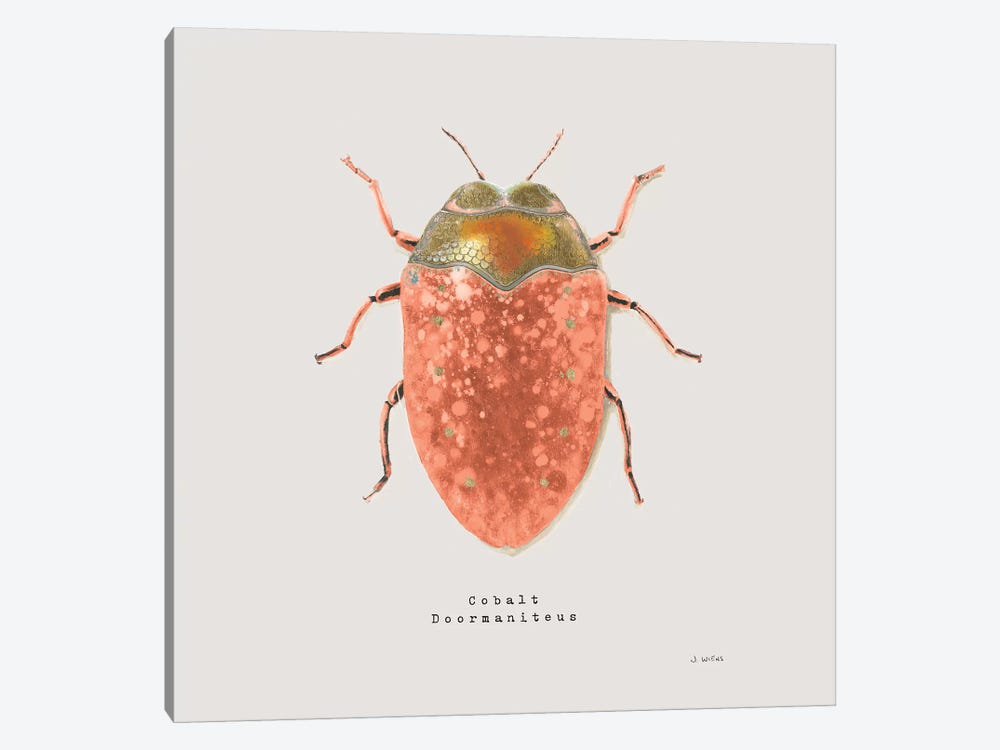 Adorning Coleoptera V Sq Camelia by James Wiens 1-piece Canvas Art Print
