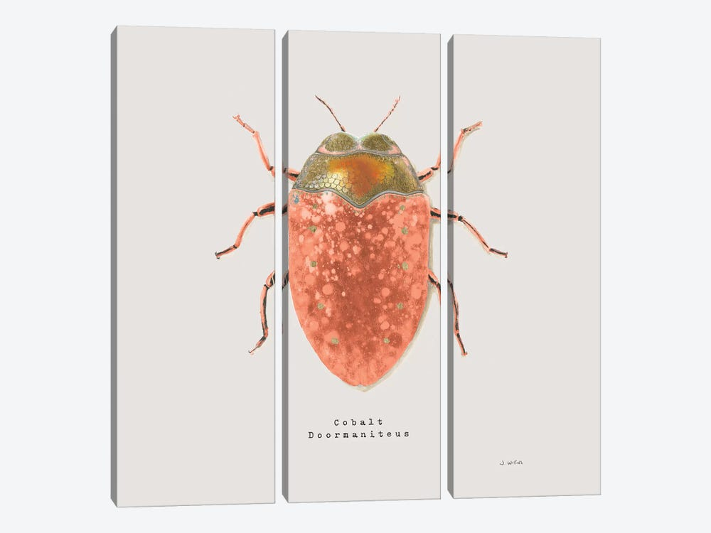 Adorning Coleoptera V Sq Camelia by James Wiens 3-piece Canvas Print
