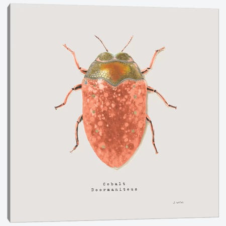 Adorning Coleoptera V Sq Camelia Canvas Print #JAW17} by James Wiens Canvas Art