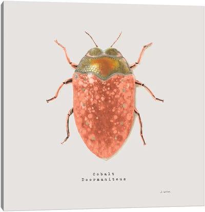 Adorning Coleoptera V Sq Camelia Canvas Art Print