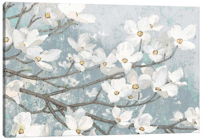 Dogwood Blossoms II In Blue Gray Crop Canvas Art Print