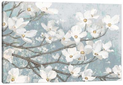 Dogwood Blossoms II In Blue Gray Crop Canvas Art Print