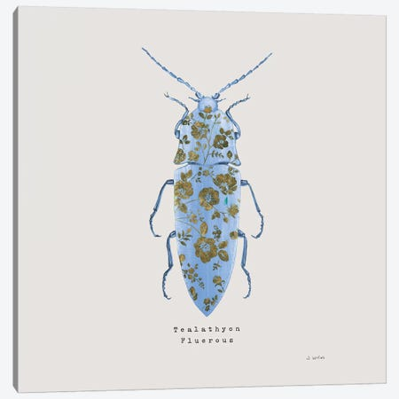 Adorning Coleoptera VIII Sq Blue Canvas Print #JAW20} by James Wiens Canvas Wall Art