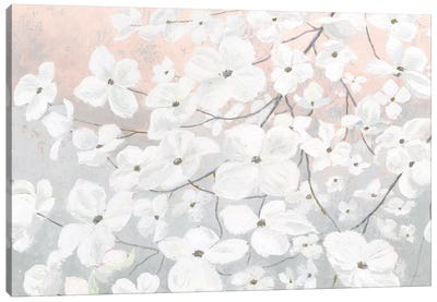 Bringing in Blossoms Blush Canvas Art Print