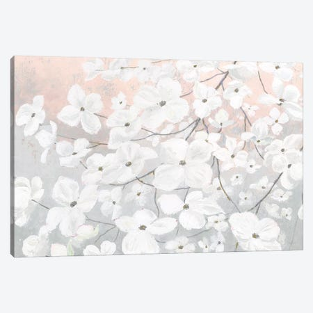 Bringing in Blossoms Blush Canvas Print #JAW27} by James Wiens Art Print
