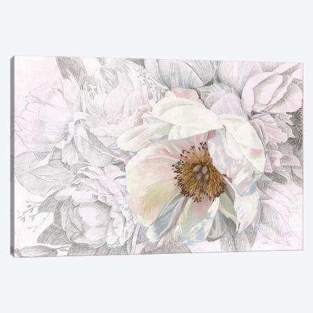 Blooming Sketch Canvas Print #JAW33} by James Wiens Art Print