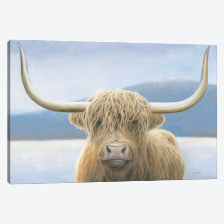 Highland Cow Canvas Print #JAW37} by James Wiens Canvas Art