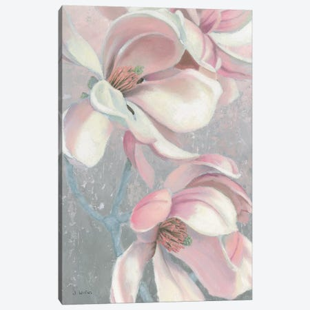 Sunrise Blossom I Canvas Print #JAW3} by James Wiens Canvas Art