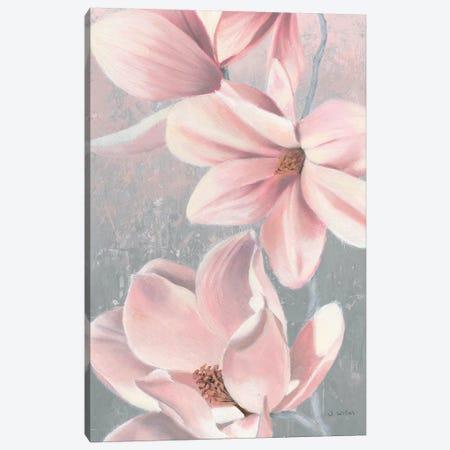 Sunrise Blossom II Canvas Print #JAW4} by James Wiens Canvas Print