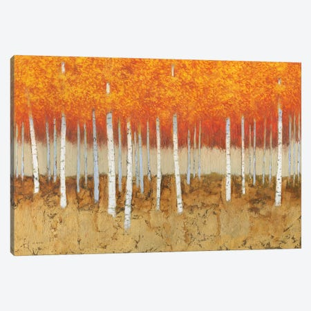 Autumn Birches Canvas Print #JAW56} by James Wiens Canvas Wall Art
