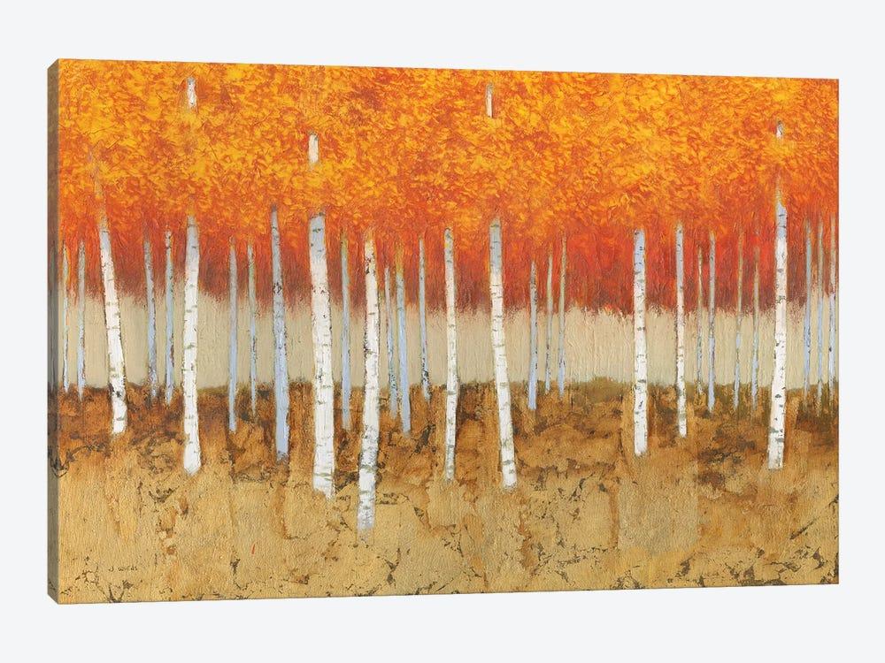 Autumn Birches by James Wiens 1-piece Canvas Art