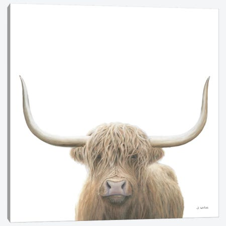 Highland Cow  Canvas Print #JAW76} by James Wiens Canvas Artwork