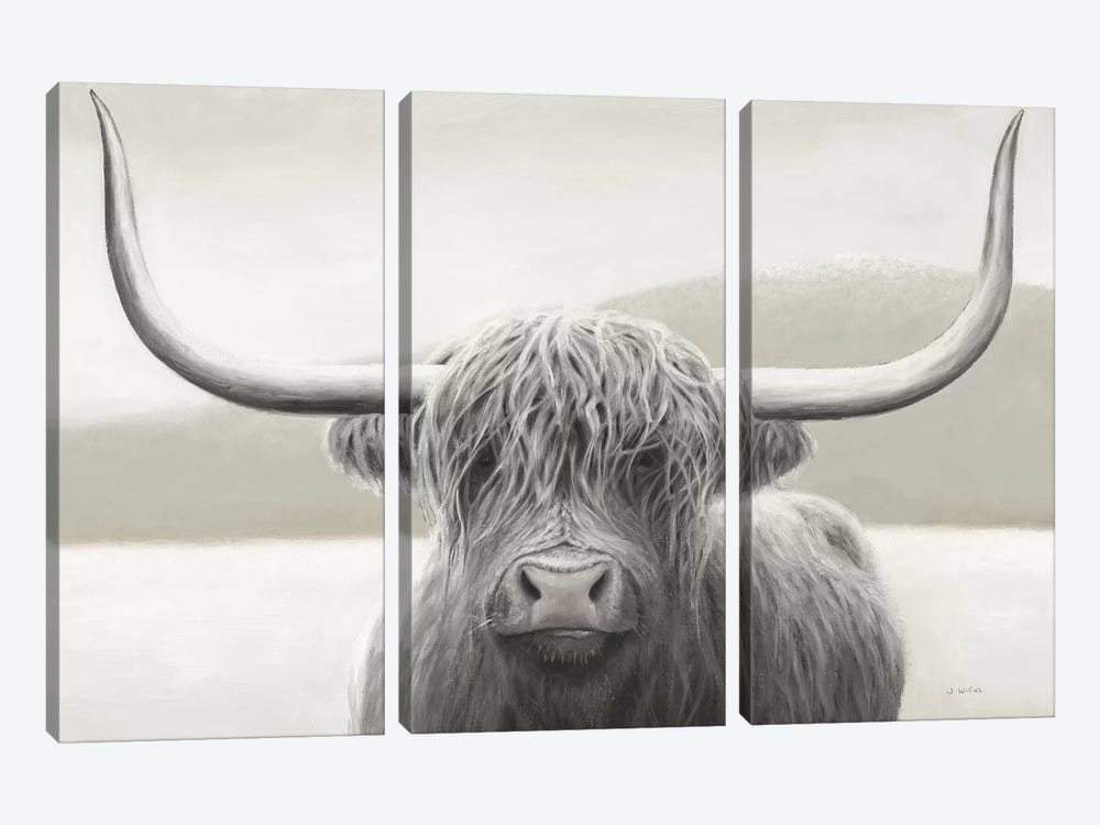 Highland Cow Neutral by James Wiens 3-piece Canvas Art Print