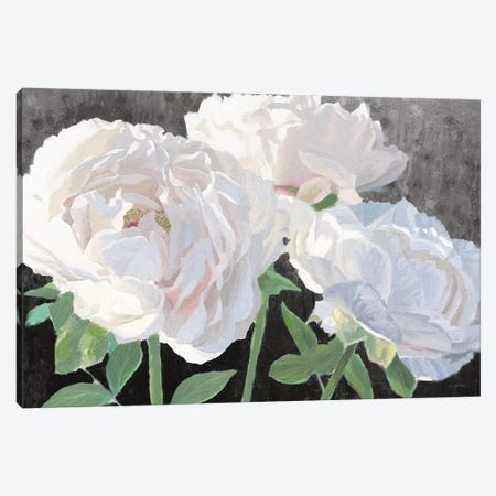 Essence of June I Black Canvas Print #JAW92} by James Wiens Art Print