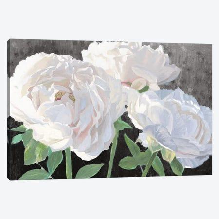 Essence of June I Black Canvas Print #JAW92} by James Wiens Art Print