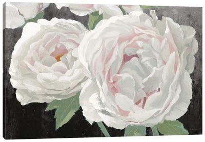 Essence of June II Black Canvas Art Print