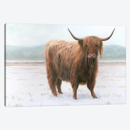 King of the Highland Fields Canvas Print #JAW98} by James Wiens Canvas Print
