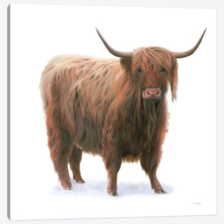 King of the Highland Fields on White Canvas Print #JAW99} by James Wiens Canvas Art Print