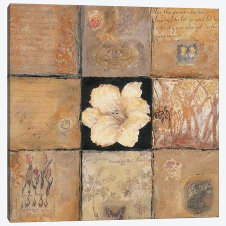 Golden Light Composition II Canvas Print #JBA25} by Judi Bagnato Canvas Print